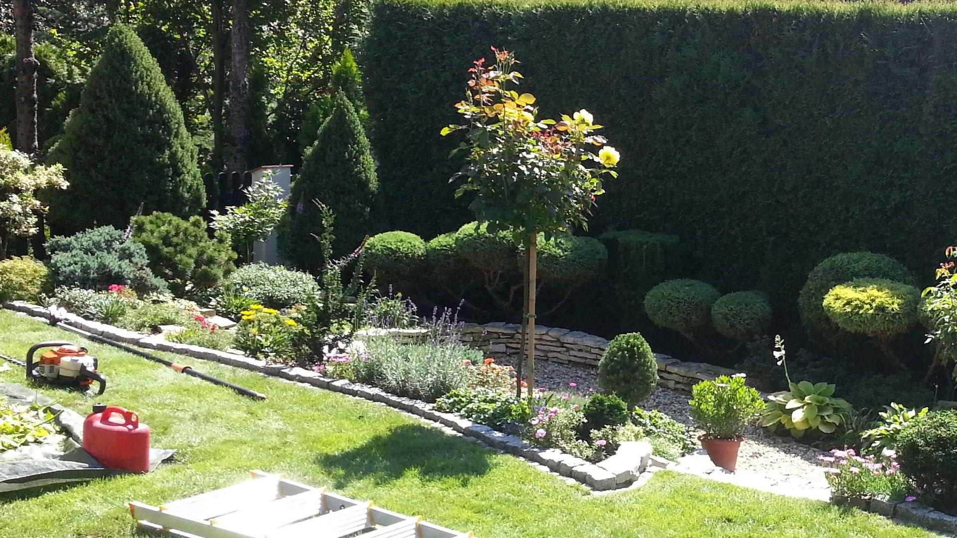 Usługi ogrodnicze - pielęgnacja ogrodów